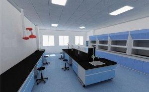 什么是P2实验室?P2实验室是做什么的?